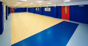 Specially designed Judo room
