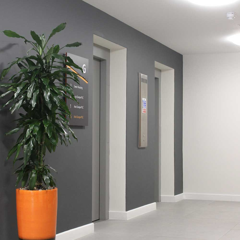 new painted walls and tiles next to a tropical plant at an office space renovated by axis.