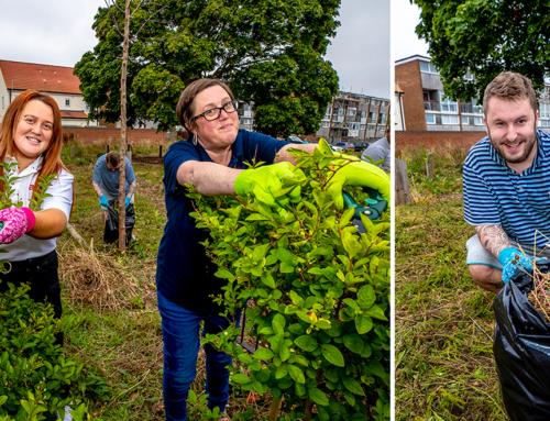 Axis Volunteers Help Revive Beechwood Community Garden